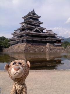 松本城に来たひょう