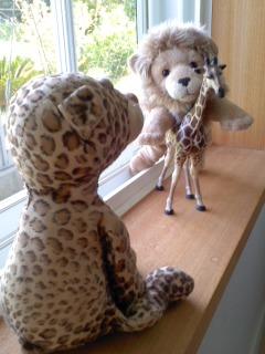 ライオンとキリンに遭遇したひょう