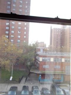 20121112-1122_NY_047.jpg