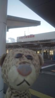 いわて花巻空港に来たひょう